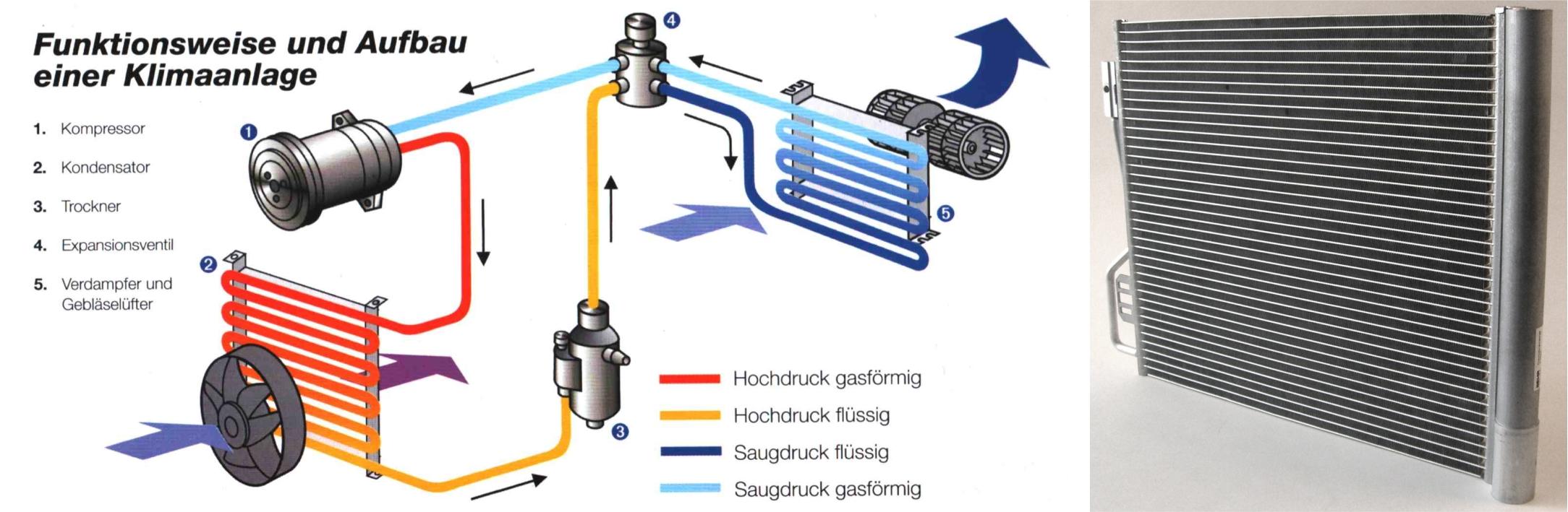KIT - Institute of Thermal Process EngineeringMitarbeiter | People ...